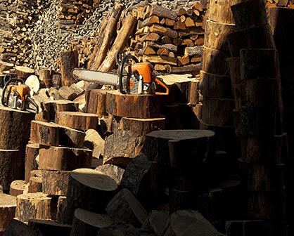 Taurus Wood Παιανια